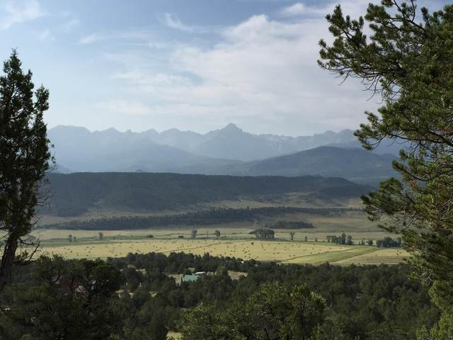 TBD Pleasant Valley Court #18, Ridgway, CO 81432 (MLS #38253) :: Compass