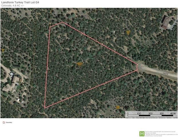 132 Turkey Trail, Ridgway, CO 81432 (MLS #38267) :: Compass