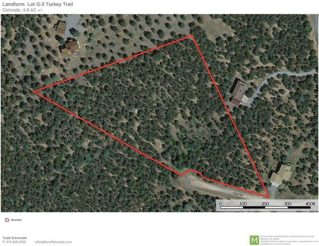 125 Turkey Trail, Ridgway, CO 81432 (MLS #38268) :: Compass