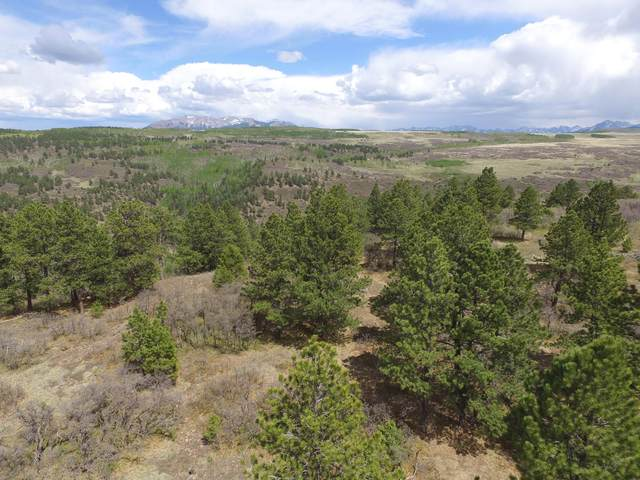 TBD Peninsula Drive #27, Placerville, CO 81430 (MLS #38311) :: Compass