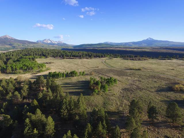 TBD Peninsula Drive 27 & 28, Placerville, CO 81430 (MLS #38313) :: Compass