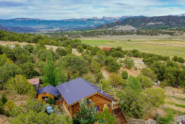 50 Camino San Juan, Ridgway, CO 81432 (MLS #38324) :: Telluride Real Estate Corp.