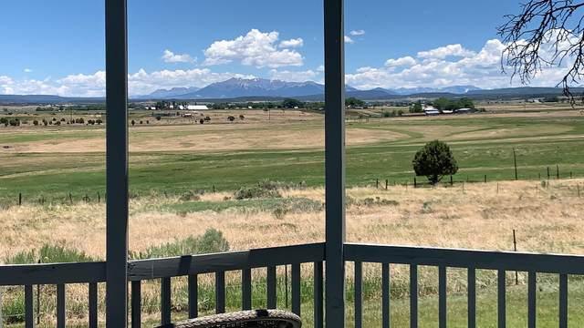 1605 Co Rd Z42, Norwood, CO 81423 (MLS #38343) :: Telluride Properties