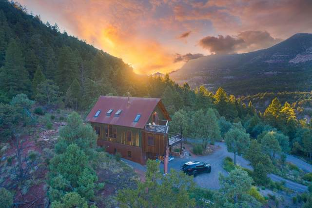 201 Stella Drive, Placerville, CO 81430 (MLS #38351) :: Telluride Properties