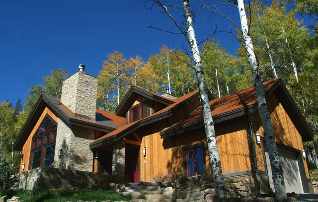 295 Sky Mountain Ranch Rd, Placerville, CO 81430 (MLS #38372) :: Telluride Properties