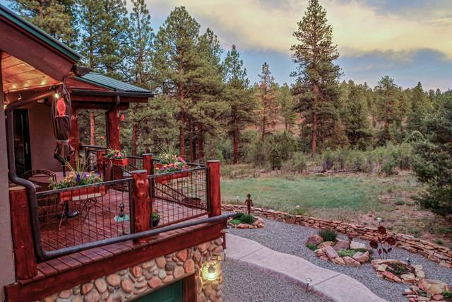 25 Canyon Point Drive, Ridgway, CO 81432 (MLS #38374) :: Compass