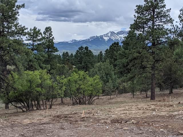 126 Marmot Drive, Ridgway, CO 81432 (MLS #38388) :: Telluride Properties