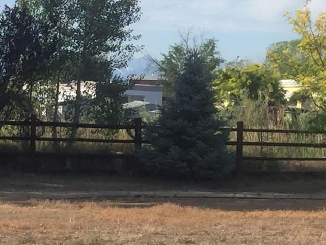 Lot 1 Tbd Poplar Street, Montrose, CO 81401 (MLS #38402) :: Telluride Properties