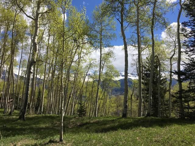 99 Elk Park Road, Telluride, CO 81435 (MLS #38417) :: Compass