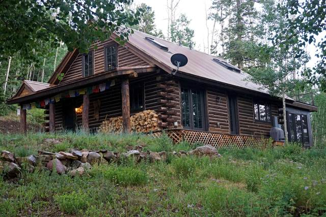444 Woods Road, Placerville, CO 81430 (MLS #38438) :: Compass