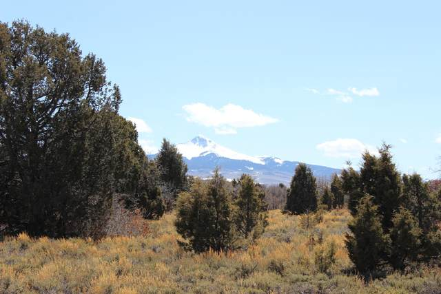 TBD Lot 2A Beaver Pines Subdivision Road 2A, Norwood, CO 81423 (MLS #38453) :: Compass