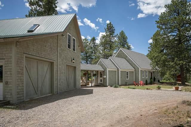 1750 High Bluff Drive, Placerville, CO 81430 (MLS #38465) :: Compass
