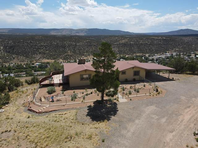 27587 Ee 28 Road, Naturita, CO 81422 (MLS #38481) :: Telluride Real Estate Corp.