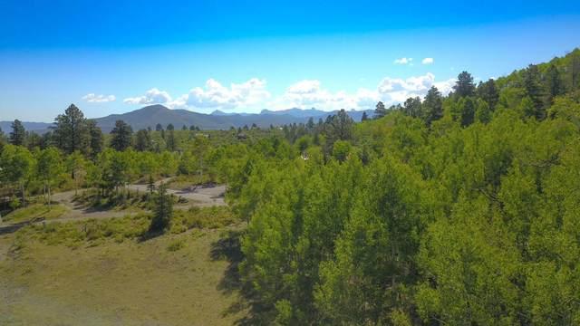 1309 Aspen Drive #105, Ridgway, CO 81432 (MLS #38482) :: Compass
