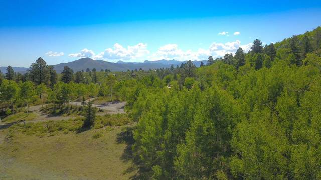 1269 Aspen Drive #104, Ridgway, CO 81432 (MLS #38483) :: Compass