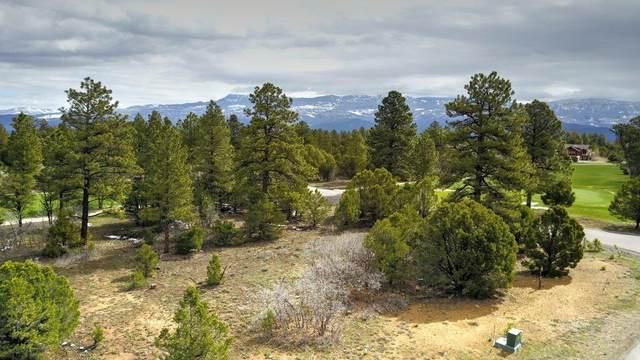 TBD - 556 N Badger Trail #556, Ridgway, CO 81432 (MLS #38499) :: Compass