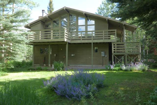 285 Beaver Pond Lane, Telluride, CO 81435 (MLS #38519) :: Compass