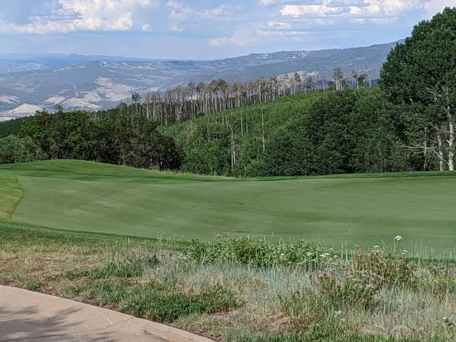344 Maverick Lane #12, Montrose, CO 81403 (MLS #38520) :: Telluride Properties
