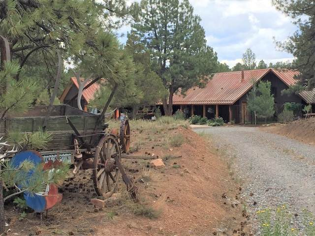 19 Canyon, Ridgway, CO 81432 (MLS #38551) :: Compass