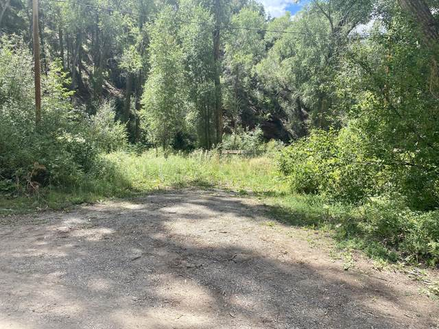 TBD River Trail Road #5, Sawpit, CO 81435 (MLS #38587) :: Compass