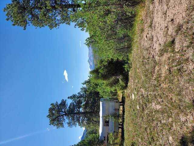TBD Grean Meadows Ln. Lot 126, Placerville, CO 81430 (MLS #38589) :: Compass