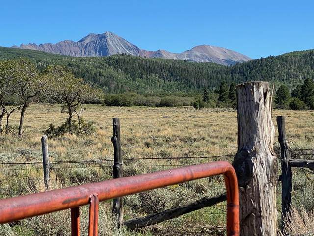 TBD 48L Road, Norwood, CO 81423 (MLS #38602) :: Telluride Real Estate Corp.