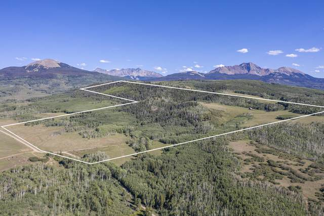 8563 County Road M44, Placerville, CO 81430 (MLS #38604) :: Telluride Properties
