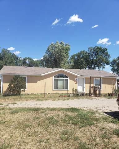 1220 Aspen Street Street, Norwood, CO 81423 (MLS #38605) :: Telluride Real Estate Corp.