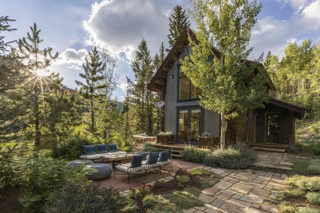 6036 County Road 63L, Telluride, CO 81435 (MLS #38607) :: Telluride Properties