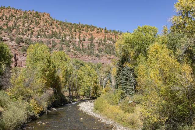 5 River Trail Rd. #1, Placerville, CO 81430 (MLS #38646) :: Telluride Real Estate Corp.