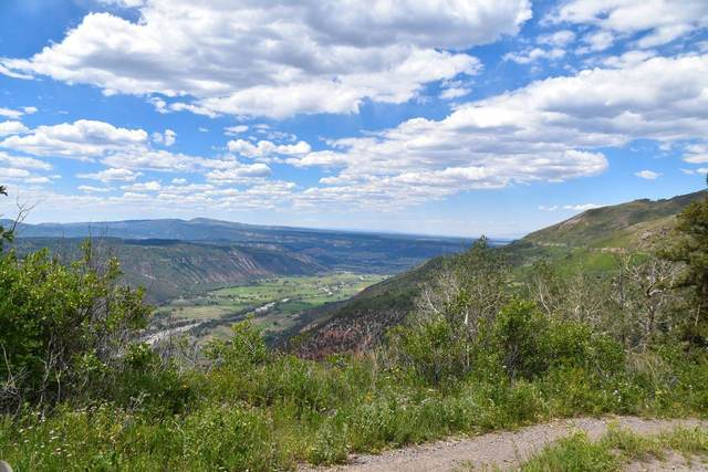 TBD Highway 550, Ouray, CO 81427 (MLS #38695) :: Compass