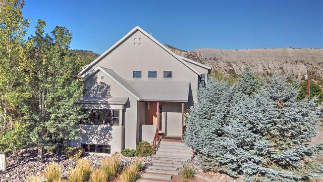 251 S Charlotte Street, Ridgway, CO 81432 (MLS #38726) :: Telluride Real Estate Corp.
