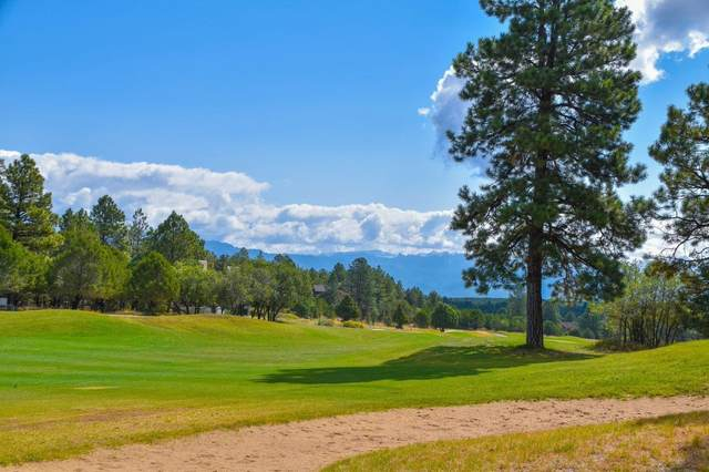 244 S Badger Trail #439, Ridgway, CO 81432 (MLS #38727) :: Telluride Properties