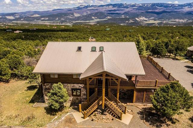 751 Pine Drive, Ridgway, CO 81432 (MLS #38734) :: Compass