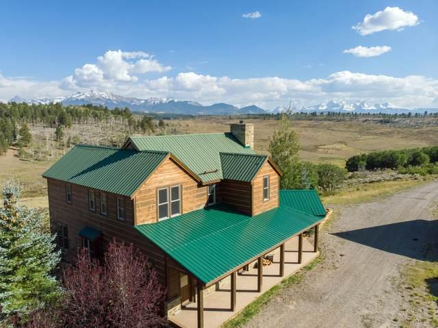 2860 Mckenzie Springs Road, Placerville, CO 81430 (MLS #38771) :: Telluride Properties