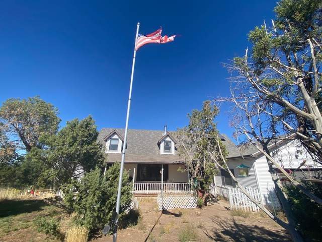 7025 Government Springs Road, Montrose, CO 81403 (MLS #38817) :: Compass