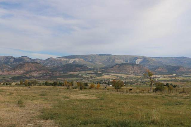 5757 Me Road, Out Of Area, CO 81624 (MLS #38836) :: Telluride Real Estate Corp.