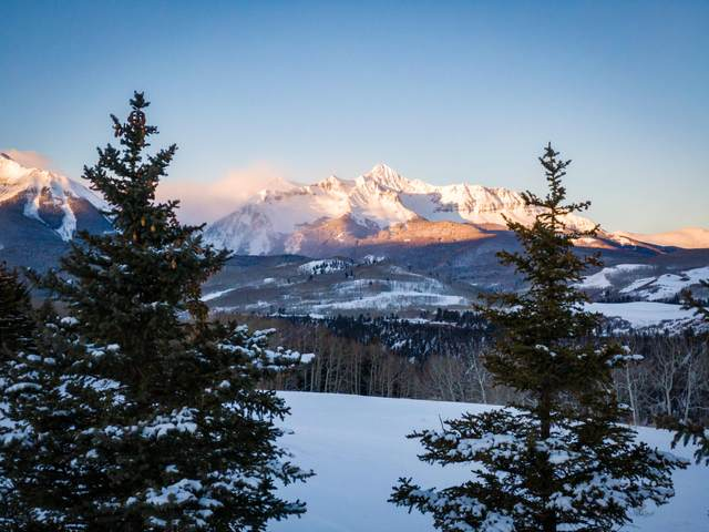 556A Victoria Point Drive #17, Telluride, CO 81435 (MLS #38848) :: Compass