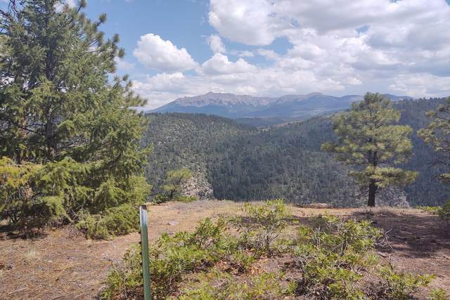 TBD High Bluff Drive, Placerville, CO 81430 (MLS #38855) :: Telluride Real Estate Corp.