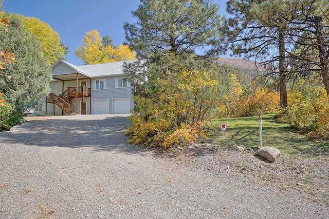 177 Blue Tip Drive, Ridgway, CO 81432 (MLS #38858) :: Telluride Real Estate Corp.