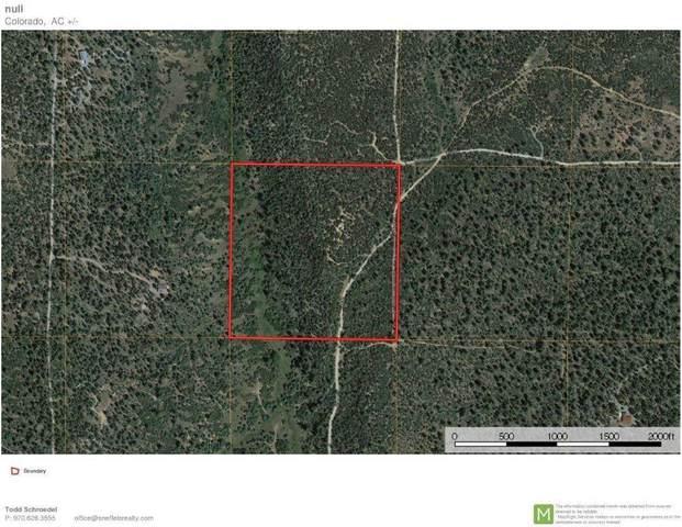 TBD Wisteria Drive, Montrose, CO 81403 (MLS #38859) :: Telluride Real Estate Corp.