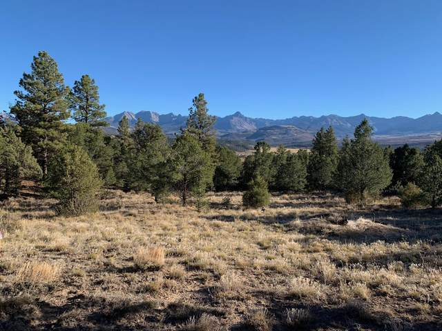 694 Pleasant Valley Drive #11, Ridgway, CO 81432 (MLS #38887) :: Compass