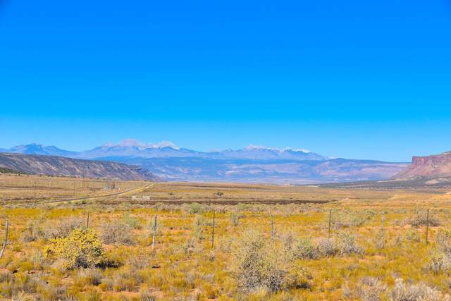TBD Highway 90, Naturita, CO 81422 (MLS #38912) :: Telluride Real Estate Corp.