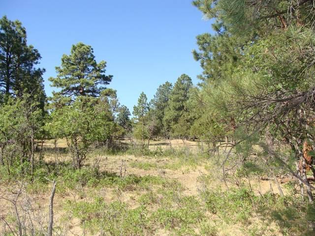 1230 Marmot Drive #217, Ridgway, CO 81432 (MLS #38933) :: Telluride Real Estate Corp.