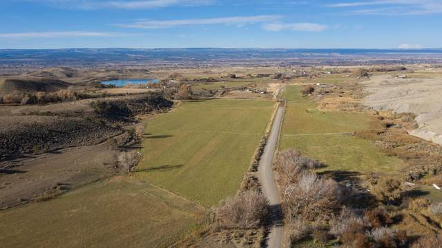 70456 Miguel Road, Montrose, CO 81401 (MLS #38971) :: Telluride Properties