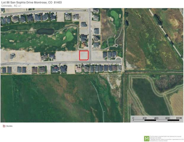 TBD Sophia Drive #86, Montrose, CO 81403 (MLS #39000) :: Compass