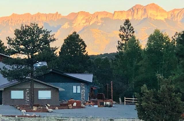 117 Ponderosa Drive, Ridgway, CO 81432 (MLS #39059) :: Telluride Real Estate Corp.