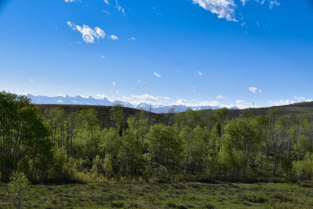 Tbd Cornerstone Loop, Montrose, CO 81403 (MLS #39073) :: Telluride Properties