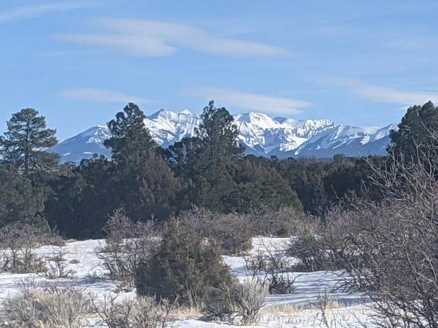 44Z S County Road T1, Norwood, CO 81423 (MLS #39075) :: Telluride Real Estate Corp.