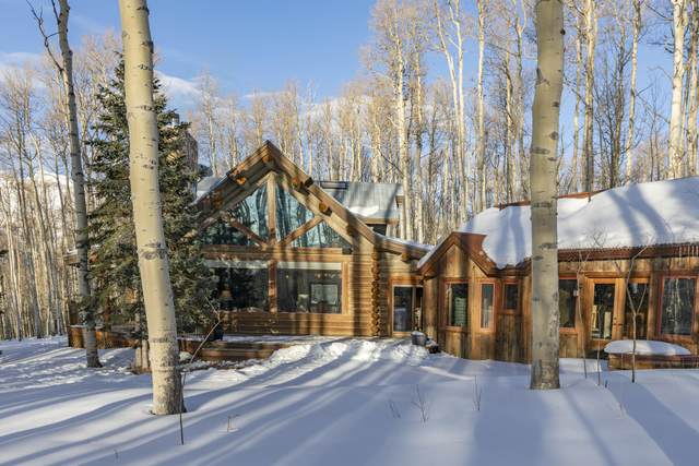 300 Elk Park Road, Telluride, CO 81435 (MLS #39099) :: Telluride Properties